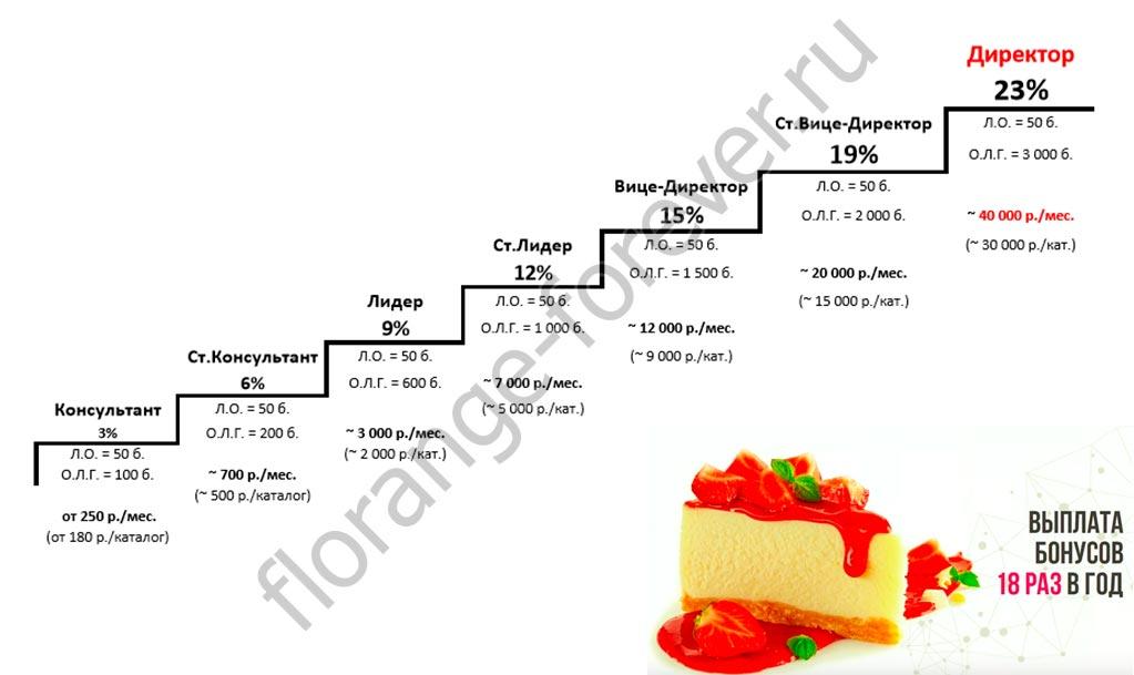 маркетинг план Faberlic до директора
